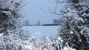 Winter east of Kelsale Village