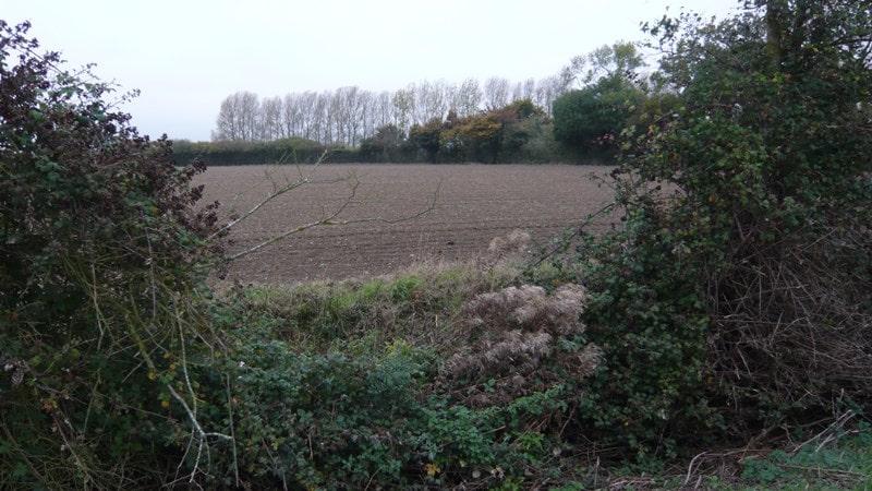 Rolling fields around Kelsale