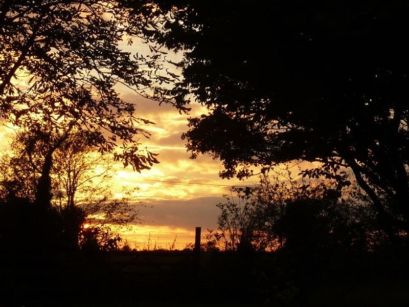 Sunset through the trees at Kelsale cum Carlton