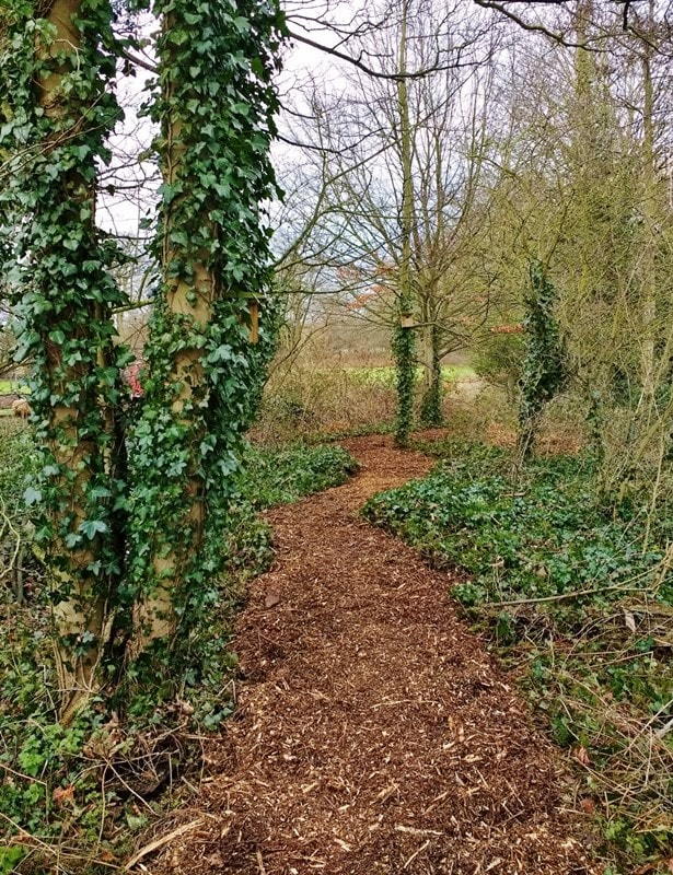 The final result, a newly woodchipped path through the trees.